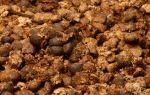 Навоз и перегной — переработка в удобрение, внесение в почву, подкормка разных культур