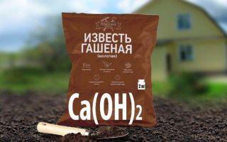 Раскисление почвы известью, когда и для чего производится