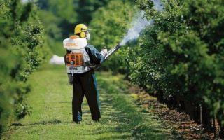 Чем обработать деревья и кустарники от вредителей и болезней?
