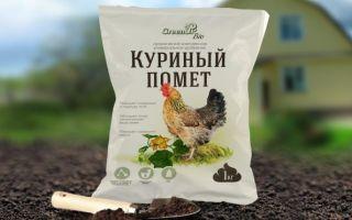 Как применять куриный помет как удобрение