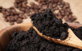 Используем спитый кофе (кофейный жмых) для подкормки растений