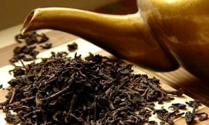 Чайная заварка для удобрения садовых и комнатных растений