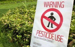 Вред удобрений — мифы и реальность