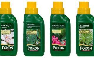 Удобрение Pokon (Покон) — инструкция по применению