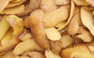 Подкормка картофельными очистками для огорода — свойства кожуры и инструкция по применению