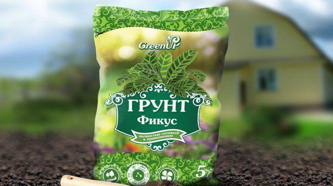 grunt-dlya-fikusa-660x370