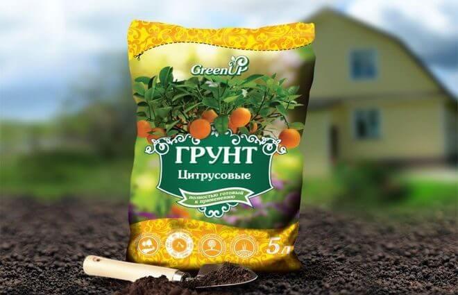 grunt-dlya-tsitrusovyh-660x425