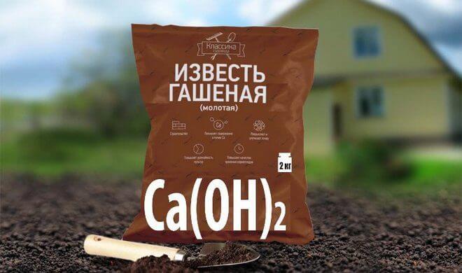 Известкование почвы, известь как удобрение для огорода