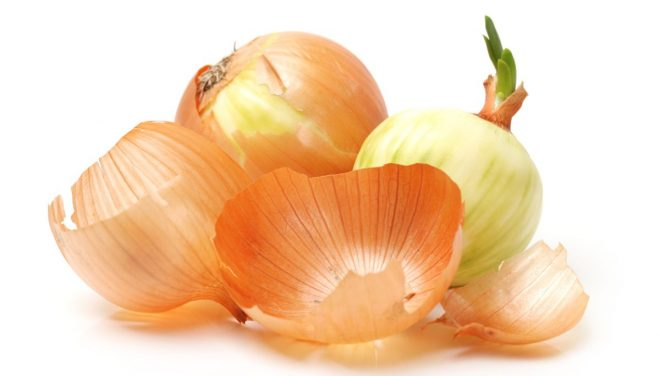 Польза луковой шелухи для растений