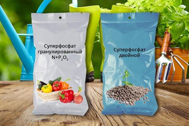 superfosfat-660x440