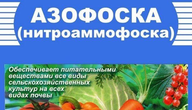 azofoska-660x380