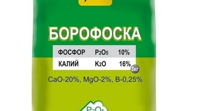 borofoska-etiketka-660x370