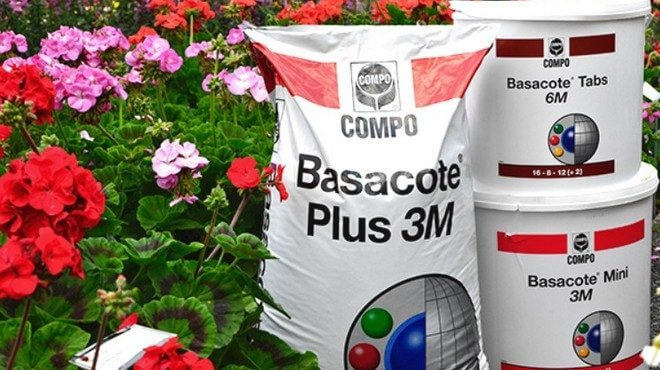 basacote-660x370
