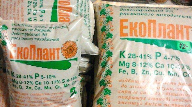 ekoplant-660x370