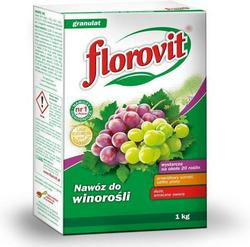 fr-vinograd-m