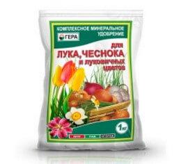 gera-dlya-luka-chesnoka
