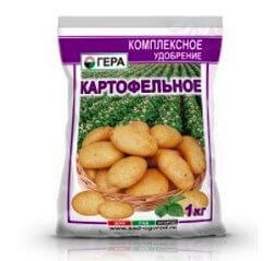 gera-kartofelnoe