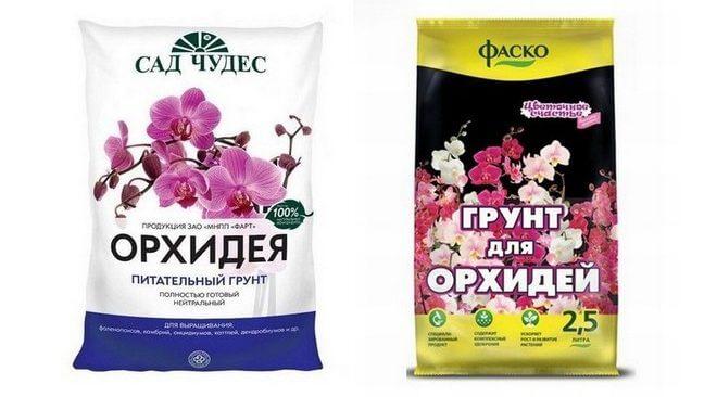 gotovyj-grunt-dlya-domashnih-orhidej-e1517664280687-660x366