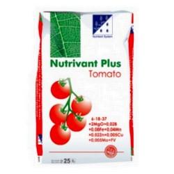 nut-tomat-m