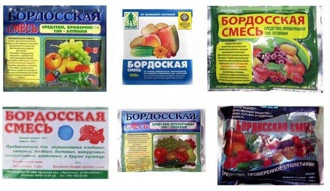 bordosskaya-smes-kolazh-660x382